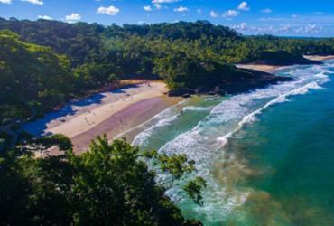 Cavalcanti anuncia megarreserva de alumínio entre Nazaré e Itacaré | Elton Andrade | Divulgação