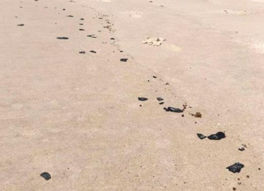 Manchas de óleo são encontradas em praia de Itacaré, no sul da Bahia | Reprodução | Ilhéus 24h
