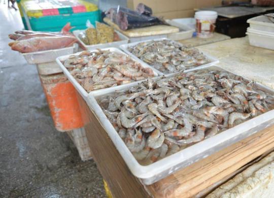 Pescadores e marisqueiras enfrentam queda nas vendas | Shirley Stolze | Ag. A TARDE