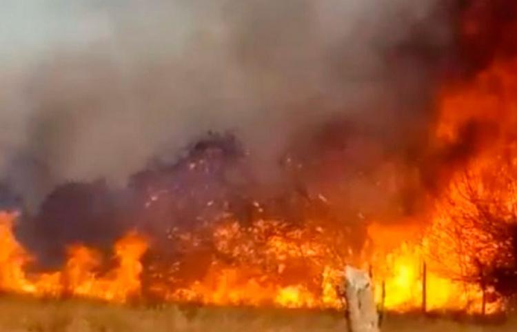 Ainda não há informações sobre a causa do incêndio - Foto: Reprodução | Calila Notícias