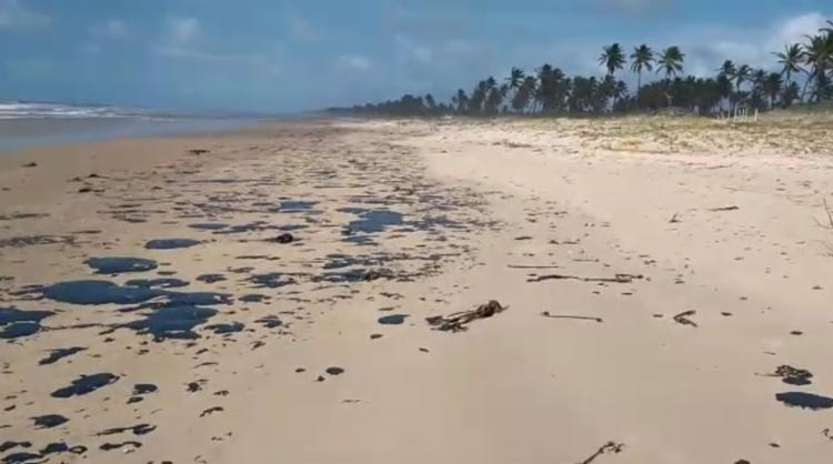 Manchas de óleo atingem todo o litoral baiano - Foto: Tamar | Divulgação
