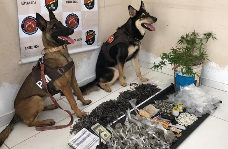 No imóvel usado para armazenamento, foram apreendidas 400 porções de maconha, cocaína e crack - Foto: Divulgação   SSP
