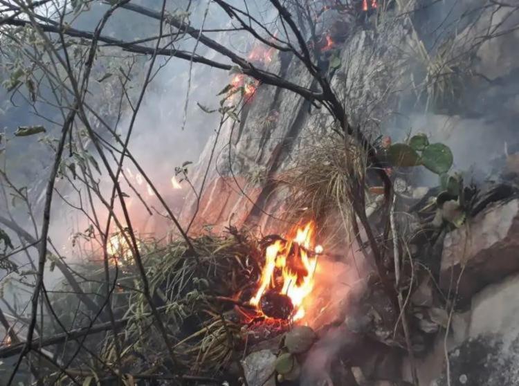 Incêndio atinge a região desde o último sábado, 19 - Foto: Divulgação | CBMBA