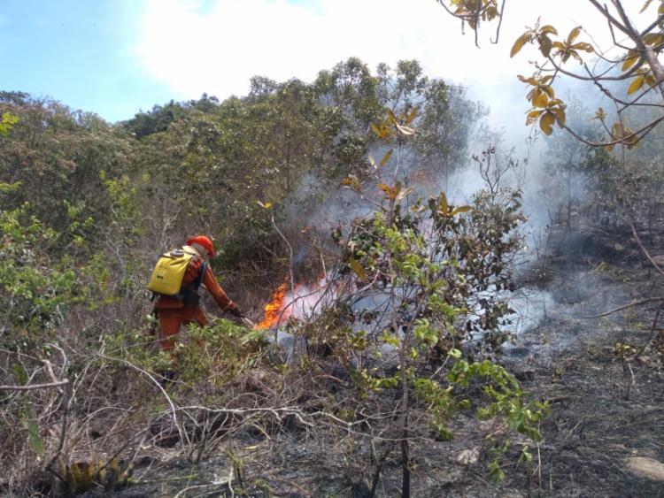 Ação contou com apoio de brigadistas voluntários capacitador por CBMBA - Foto: Divulgação | CBMBA