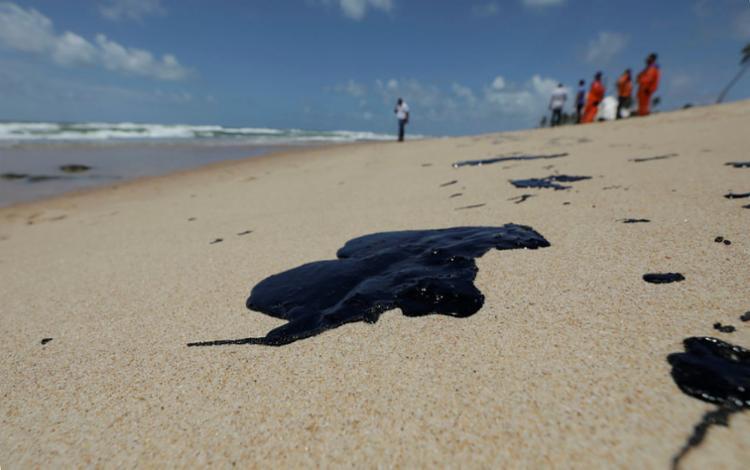 Ação visa proteger áreas sensíveis, como manguezais e estuários - Foto: Adilton Venegeroles | Ag. A TARDE