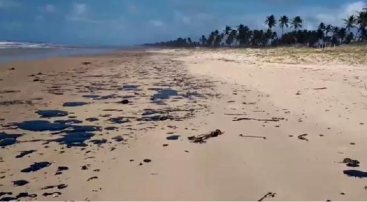 Pescadores e marisqueiras estão preocupados com efeitos em suas atividades - Foto: Tamar | Divulgação