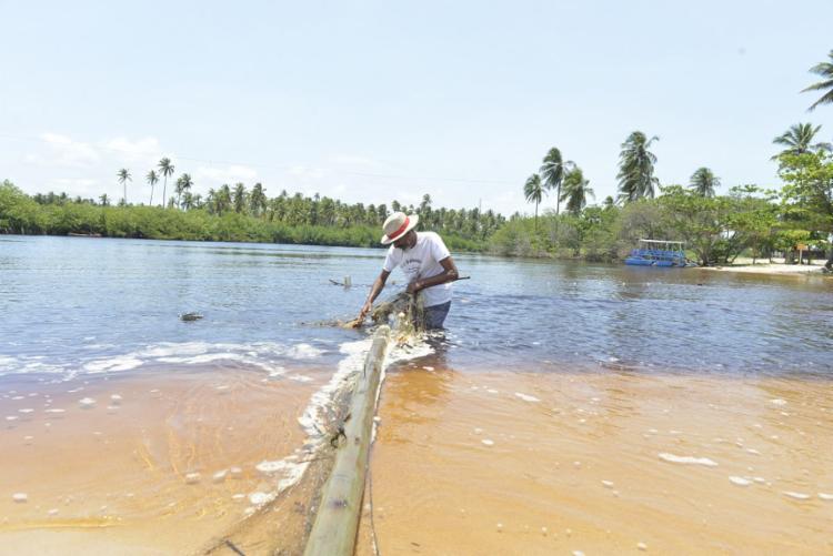 Esse número está em constante atualização pelos técnicos da Bahia Pesca - Foto: Shirley Stolze | Ag A TARDE