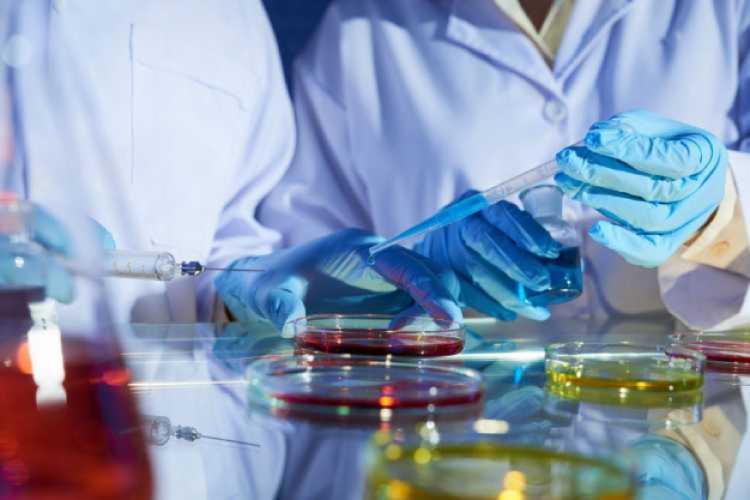 Molécula conhecida como miR-450a geralmente tem baixa expressão em tumores - Foto: Divulgação   Freepik