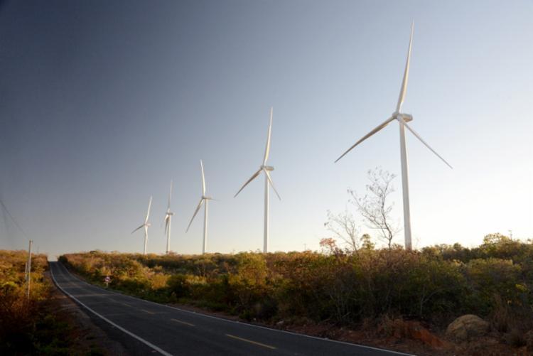 No primeiro semestre, a produção de energia elétrica a partir da fonte eólica cresceu 49,9% no estado - Foto: Divulgação Ascom-SDE/Seinfra
