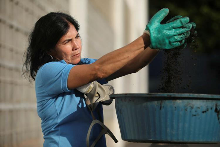 É possível que o carvão gerado possa ser aplicado na construção civil - Foto: Felipe Iruatã | Ag. A TARDE