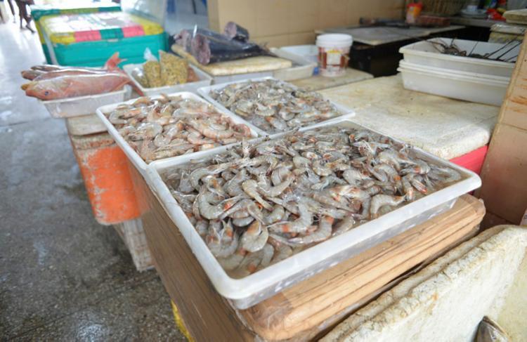 Estoque de frutos do mar se acumula com baixa procura nas feiras - Foto: Shirley Stolze   Ag. A TARDE