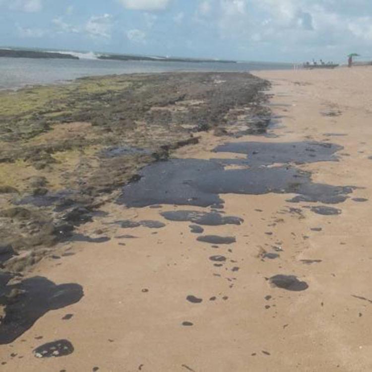 Foz do São Francisco fica na divisa entre Alagoas e Sergipe - Foto: Simone Santos | Projeto Praia Limpa