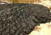 Prefeitura investiga origem de mais de 8 toneladas de resíduo despejado em Feira de Santana | Foto: Ed Santos | Acorda Cidade