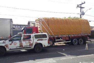 Duas toneladas de cigarros são apreendidas em São Gonçalo do Campos | Aldo Matos | Acorda Cidade