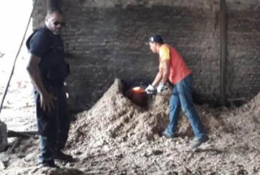 Cerca de 40 quilos de drogas são queimados em Teixeira de Freitas | Divulgação | Polícia Civil