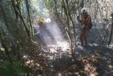 Incêndio florestal em Rio de Contas e Livramento é controlado