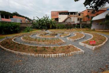 Escola em Ilha de Maré ganha primeira horta comunitária |