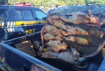Polícia apreende 1 tonelada de carne transportada irregularmente na Bahia | Divulgação | PRF-BA