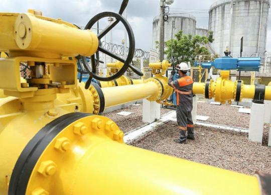 Setor de gás natural exige segurança jurídica   Cigás   Divulgação