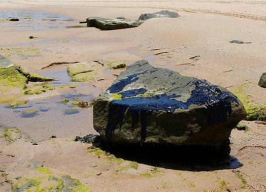Óleo no litoral: especialista defende monitoramento contínuo de navios | Rafael Martins | Ag. A TARDE