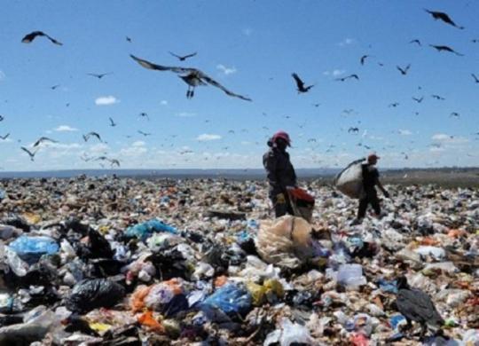 Porto Seguro: MP-BA investiga descarte irregular de lixo hospitalar | Jojô Notícias | Reprodução