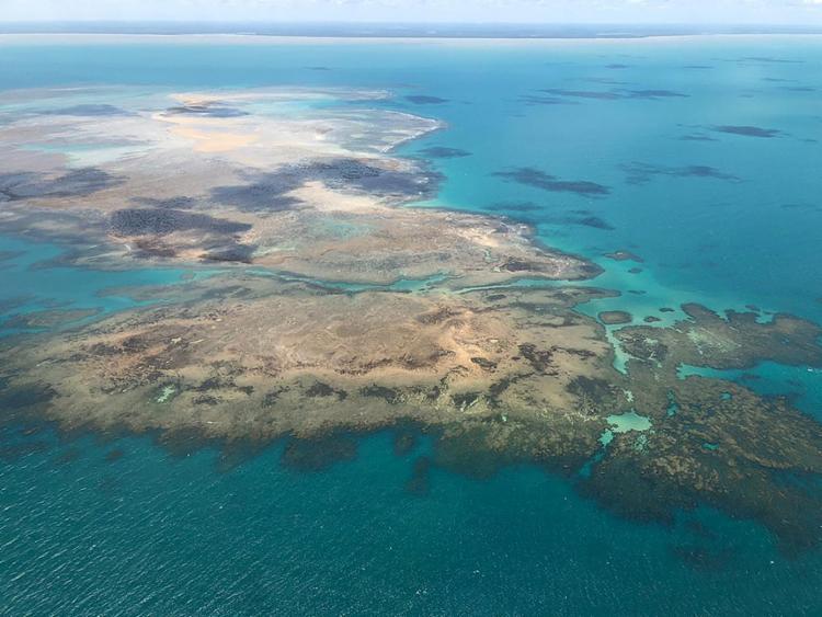 Arquipélago mantém a maior biodiversidades do Atlântico Sul | Foto: IBAMA | Divulgação - Foto: IBAMA | Divulgação