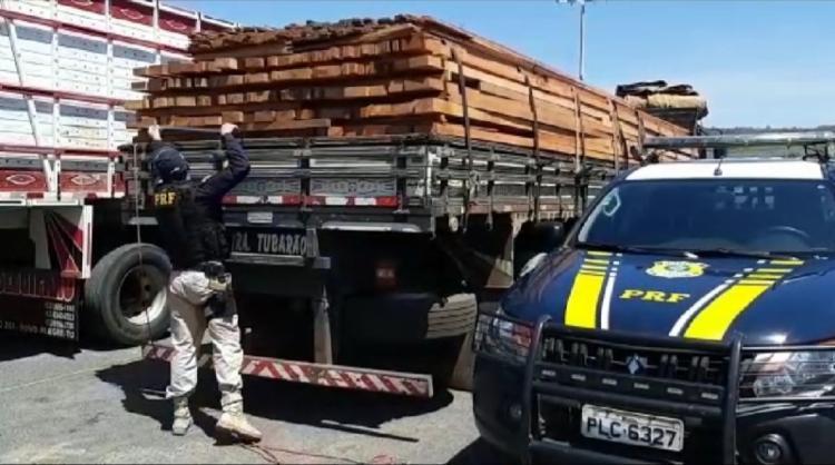 Condutor infringiu Lei de Crimes Ambientais   Foto: Divulgação   PRF - Foto: Divulgação   PRF