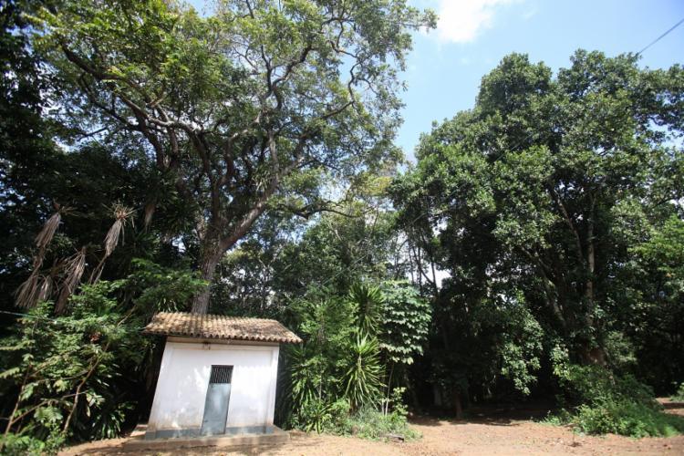 O Bate-Folha, maior terreiro de candomblé em extensão territorial do país, completou 100 anos em 2016