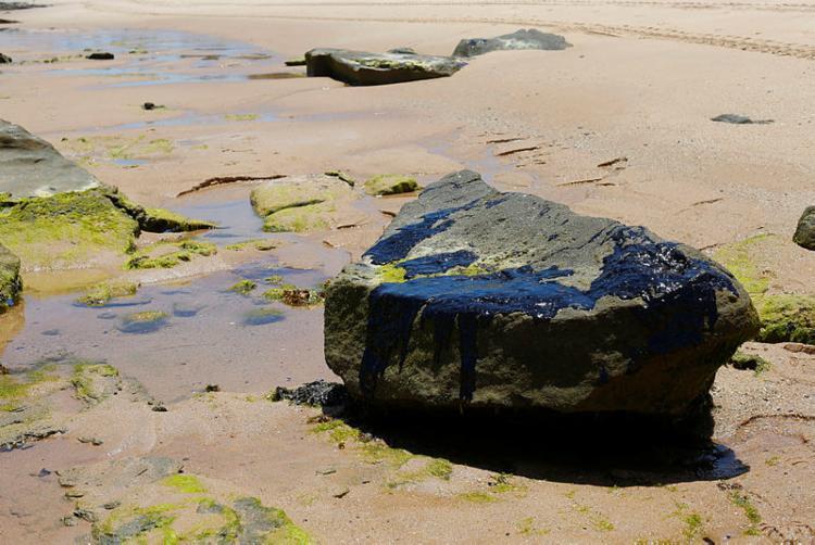 Manchas de óleo atinge o litoral nordestino há meses | Rafael Martins | Ag. A TARDE - Foto: Rafael Martins | Ag. A TARDE