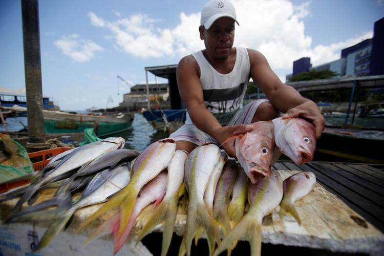 Pescadores não conseguem comercializar peixes e outros pescados | Raul spinassé | Ag. A TARDE - Foto: Raul spinassé | Ag. A TARDE
