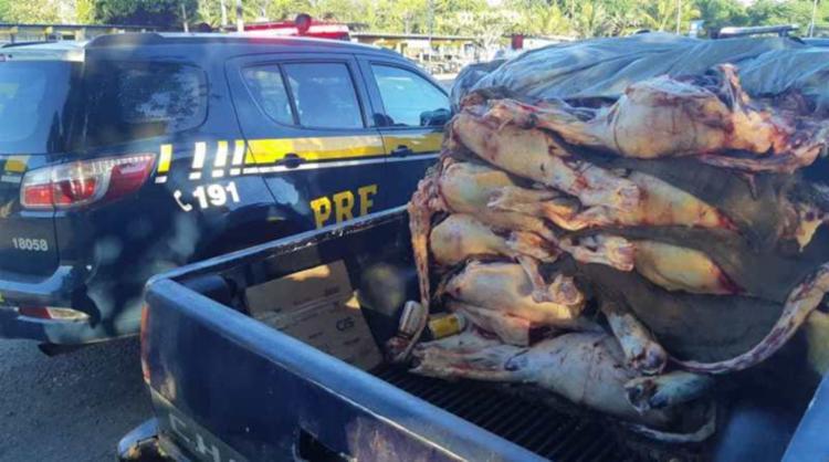 Carne era levada na caçamba coberta por uma lona e sem refrigeração | Foto: Divulgação | PRF-BA - Foto: Divulgação | PRF-BA