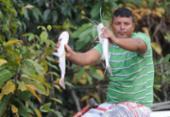 Caixa começa a pagar auxílio emergencial a pescadores | Foto: