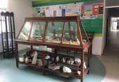 Ufba inaugura Museu de Geociências nesta sexta-feira em Salvador | Foto: