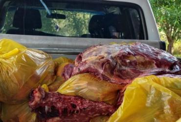 Mais de uma tonelada de carne de cavalo é apreendida na Bahia | Divulgação