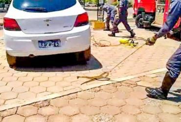 Cobra venenosa é encontrada dentro de carro em pátio de faculdade | Divulgação | Corpo de Bombeiros