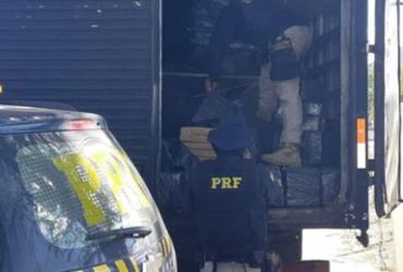 Polícia encontra mais de uma tonelada de maconha na Bahia | Divulgação