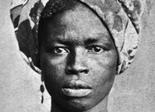 Heroína negra, Luiza Mahin é tema de livro de Armando Avena   Reprodução