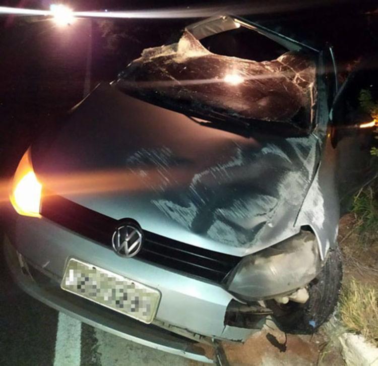 Vaca morreu com o impacto e o carro ficou destruído | Foto: Reprodução | Notícias de Santa Luz - Foto: Reprodução | Notícias de Santa Luz