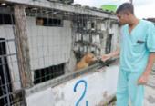 Abrigo alerta para risco por causa de infestação de ratos em Paripe | Foto: Foto: Shirley Stolze | Ag. A TARDE