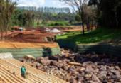 Ações de reflorestamento ainda dão os primeiros passos em Brumadinho | Foto: Divulgação | Corpo de Bombeiros de Minas Gerais
