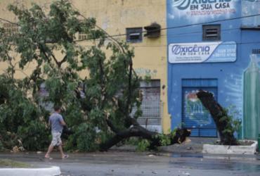 Confira imagens da chuva que atingiu a capital baiana no primeiro dia do ano |