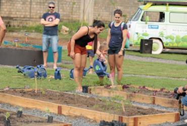 Meliponários vão ser instalados em hortas comunitárias da capital | Luciano da Matta | Ag. A TARDE