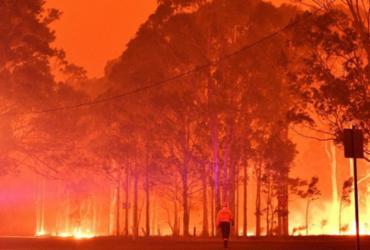 Sobe para 29 total de mortos em incêndios na Austrália | Saeed Khan | AFP
