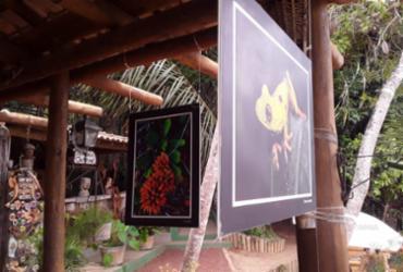 Parque Klaus Peters em Praia do Forte é tema de exposição