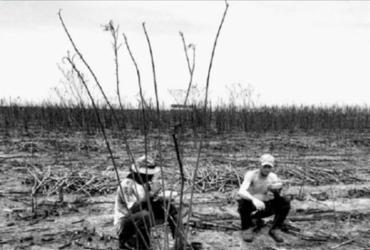 Combate ao trabalho escravo é tema de exposição fotográfica | Divulgação | MPT
