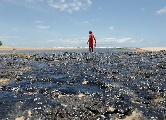 Nova coleta de pescado é realizada em áreas atingidas por vazamento de óleo | Adilton Venegeroles | Ag A TARDE