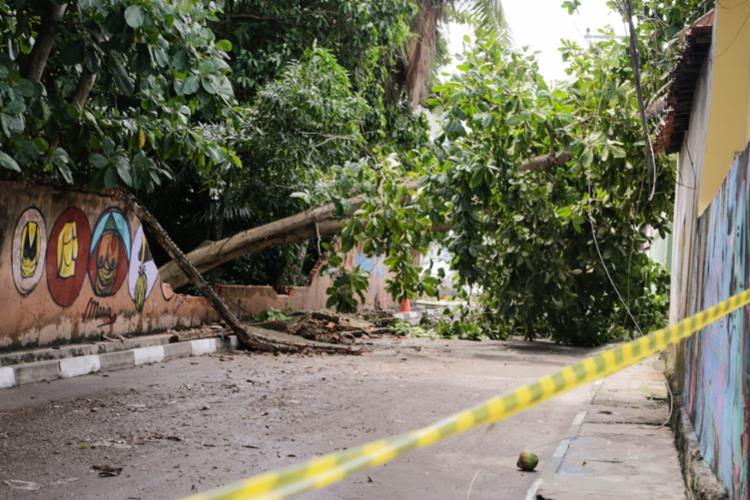 De acordo com a Defesa Civil, dez bairros foram mais atingidos nas chuvas da segunda-feira (30). - Foto: Lucas Lins_divulgação