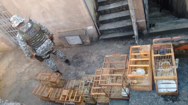 Local voltará a ser fiscalizado em 15 dias | Foto: Divulgação | GCM - Foto: Divulgação | GCM