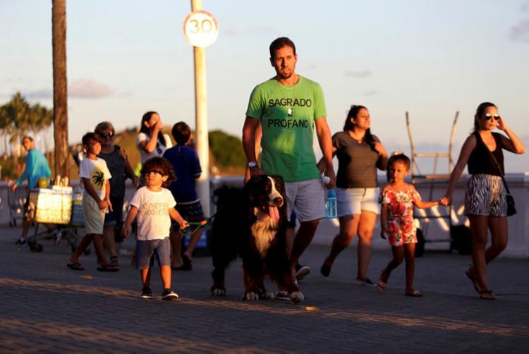 Apesar de dóceis, animais grandes como Lucky podem assustar | Foto: Adilton Venegeroles | Ag. A TARDE - Foto: Adilton Venegeroles | Ag. A TARDE