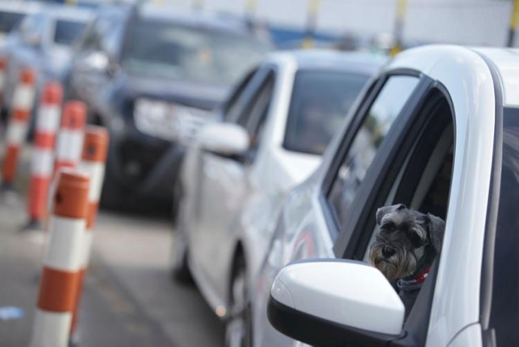 Fluxo de carros é intenso nos dois sentidos | Foto: Raphael Muller | Ag. A TARDE - Foto: Raphael Muller | Ag. A TARDE